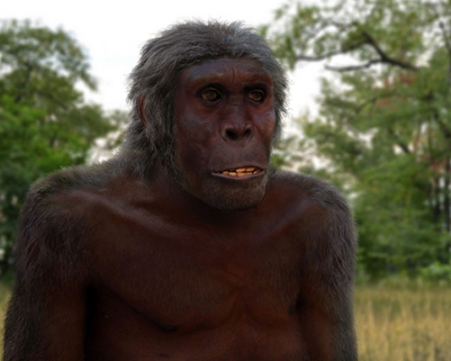 Картинки по запросу Как выглядит древний человек, лицо древнего человека